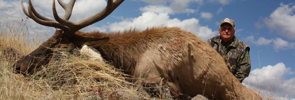 Gil Austin, 2010 Sierra Grande Bull Elk